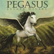 small-pegasus